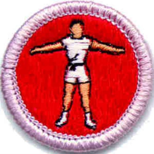 Public Advancement - Boy Scout Troop 21 (Zeeland, Michigan)